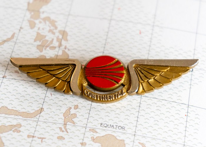 Turbulent Rise and Fall of the Kiddie Wing Pin.