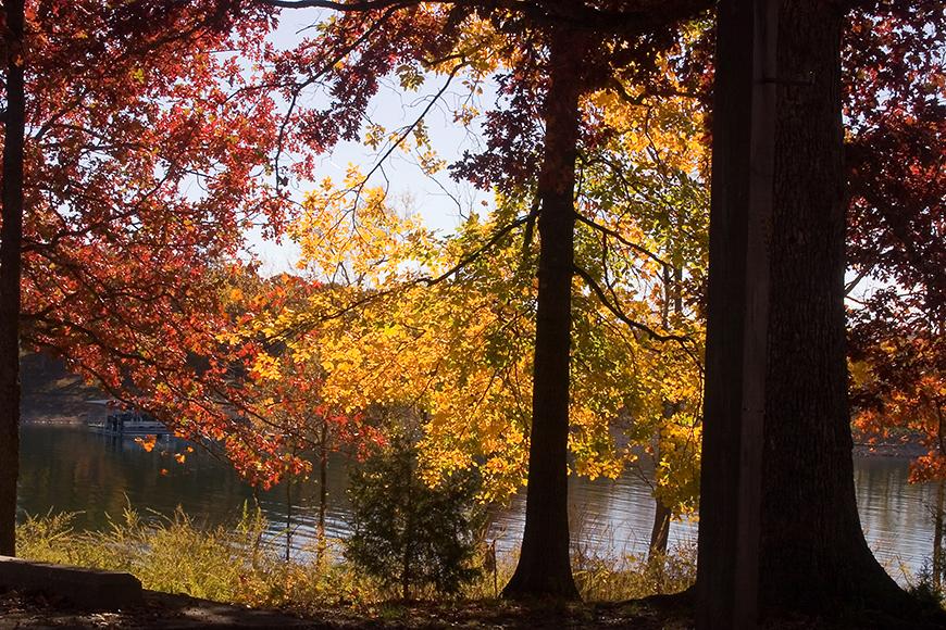 table rock lake fall foliage.