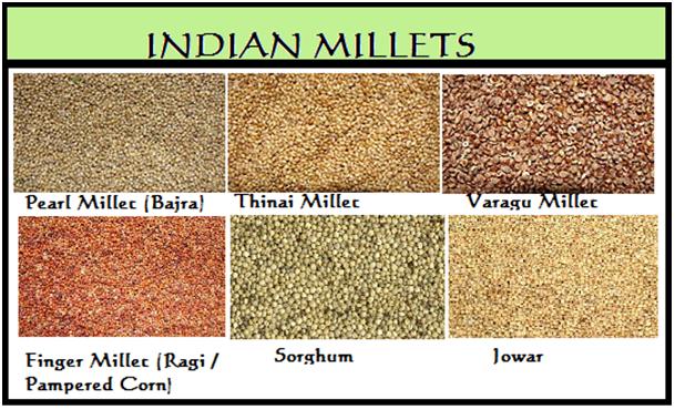 Bringing back millets- the super crop of our ancestors