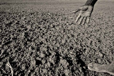 Bhungroo to Olla: 5 Simple Ideas That Can Help Farmers Save Water in Summer
