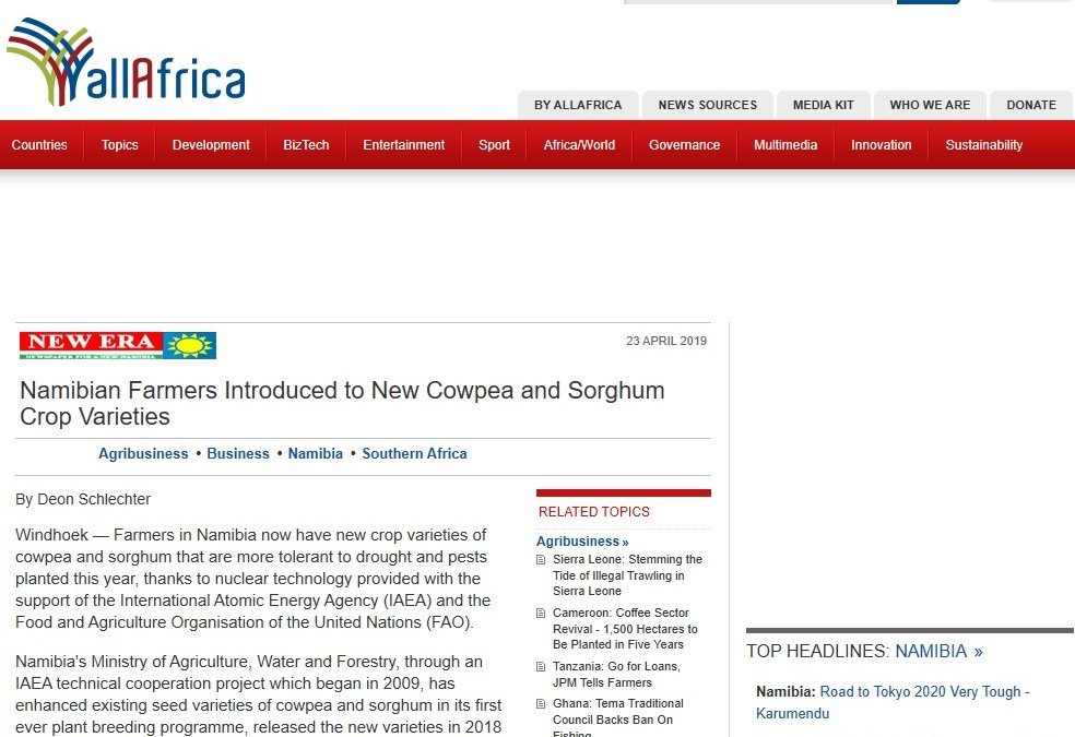 Namibian Farmers Introduced to New Cowpea and Sorghum Crop Varieties