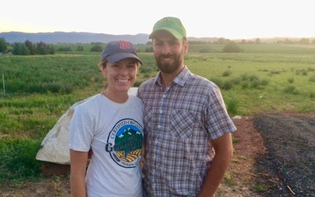 Millet in the U.S.: A Farmer's Perspective