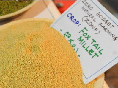 Vizag, Kurnool top minor millets production charts