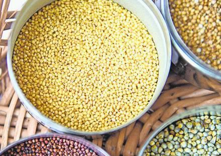 Malnourished school children to get multi-millet health mix
