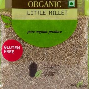 Little Millet by Terra Greens