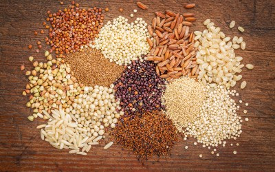 Gluten-Free Whole Grains Packed With Protein to Keep You Strong and Healthy