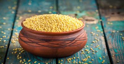 Millet shows benefits in diabetes management, study finds