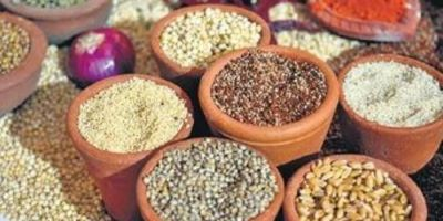 Millet based diet can help in managing blood glucose levels