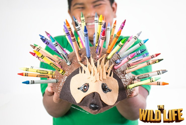DIY Crayon Holder – Epi the Echidna from The Wild Life Movie #TheWildLife