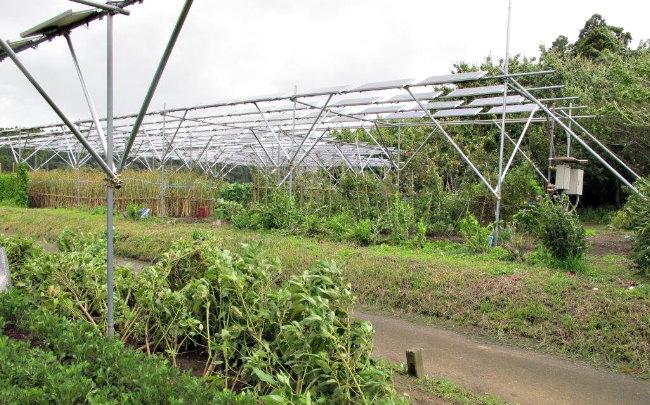 Paneles Solares Fotovoltaicos Celdas y Agricultura Solar Panels Smart Grid Eco Logia 7