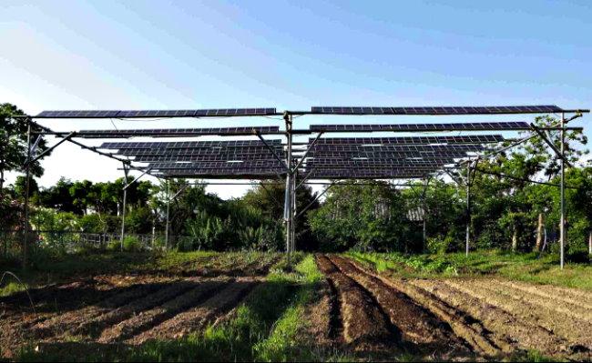 Paneles Solares Fotovoltaicos Celdas y Agricultura Solar Panels Smart Grid Eco Logia 8
