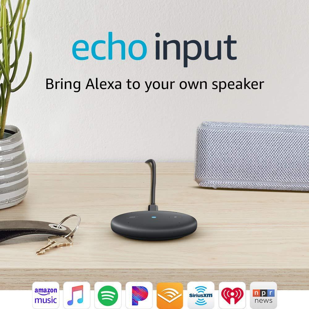 Echo Input - Cheap Smart Goods