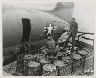 防蟻剤の歴史=使用と禁止の歴史