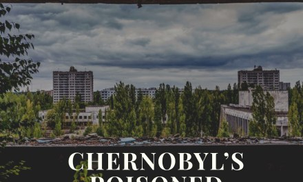 How plants reclaimed Chernobyl's poisoned land