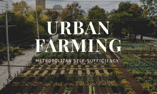 Urban farming: Metropolitan self-sufficiency