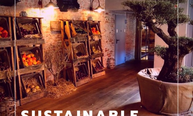 Sustainable restaurants: guilt-free dining
