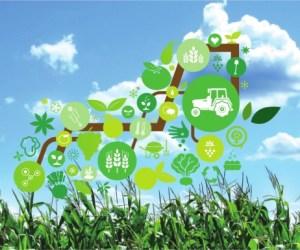 El Internet de las cosas y la agricultura