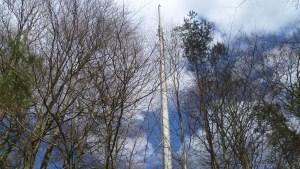 Von diesem Mast funken Telekom, Vodafone und o2 für den Biebergemünder Obergrund (Foto: SmartPhoneFan.de)