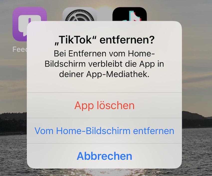Tschüss TikTok (Foto: SmartPhoneFan.de)