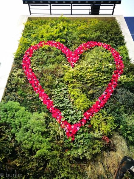 愛のある壁面緑化