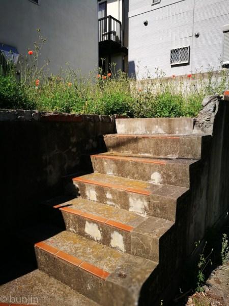 草原へ続く階段