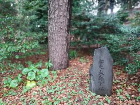 江戸城松の廊下跡