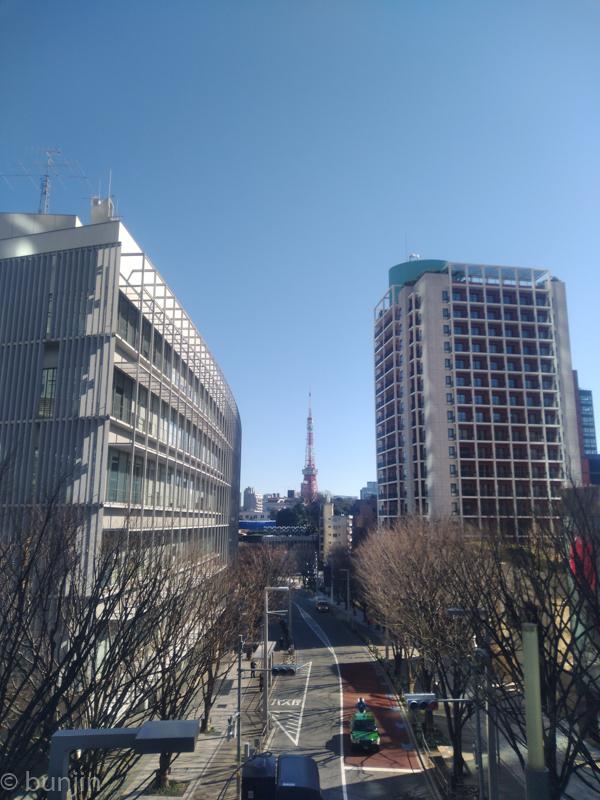 Keyakizaka and Tokyo Tower
