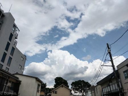 A cumulus