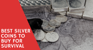 best silver coins to buy for survival