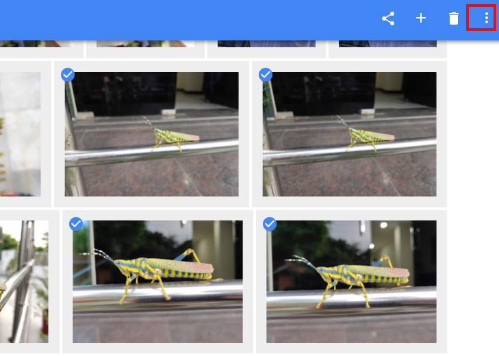 How to download multiple pictures from google photos to phone