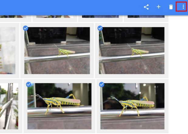 Como passar fotos do google fotos para a galeria