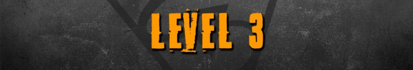 successful rapper guide level 3