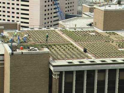 HoustonHighRise-GreenRoof