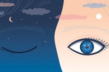 Por qué necesitamos horarios para sincronizar nuestros ritmos circadianos.