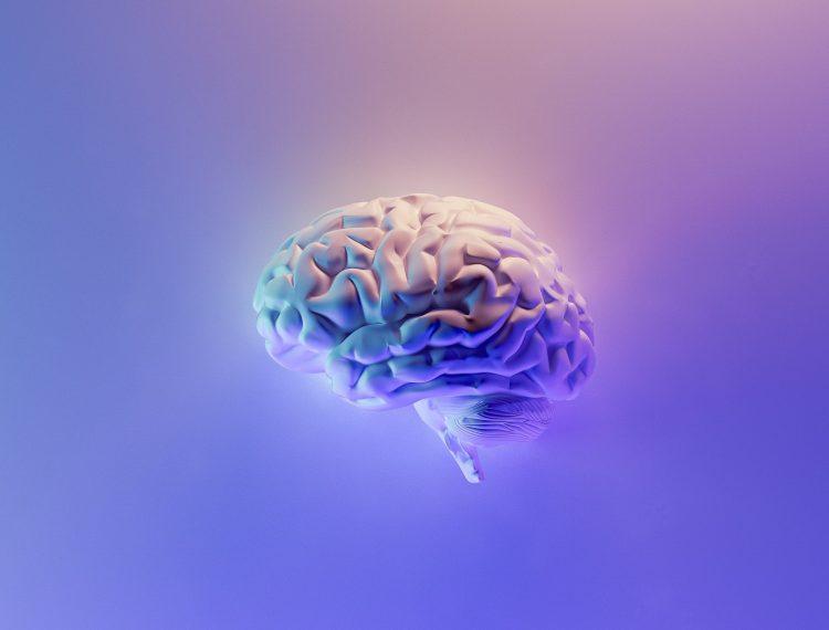 nuestro cerebro es increíble y no conocemos nada