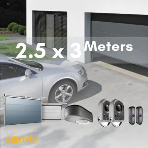 Garage Sectional Door with Somfy Motor DEXXO PRO 800 3S IO
