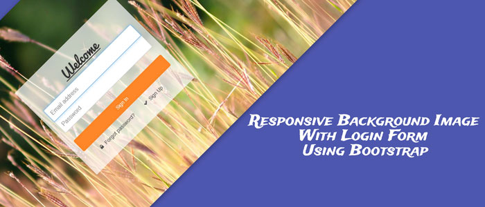 Responsive Background Image With Login Form Using Bootstrap