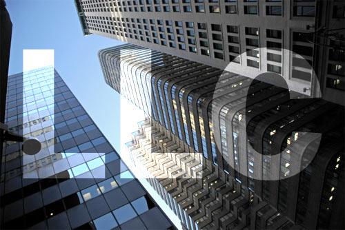 LLC company structure