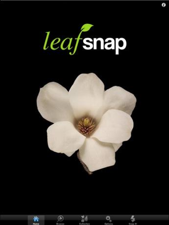 leafsnap01