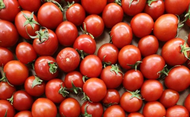8 Most Profitable Agricultural Business Ideas to Start in Nigeria