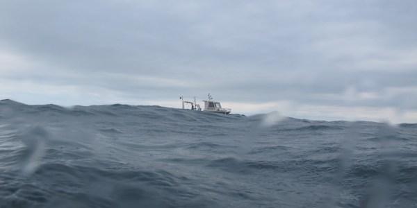 Plongée avec l'Helcyon II (@SMEL)