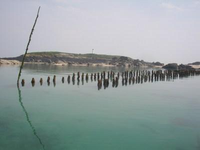 Parcs mytilicoles aux Huguenants à Chausey (SMEL)