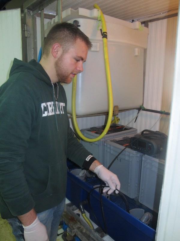 Prise de température dans une structure d'expérimentation sur les grenouilles par Xavier (@SMEL)