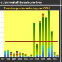 Chausey Mortalité Juvénile