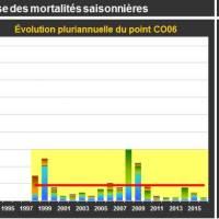 Blainville Mortalité Adulte