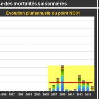 Fermanville Mortalité Adulte