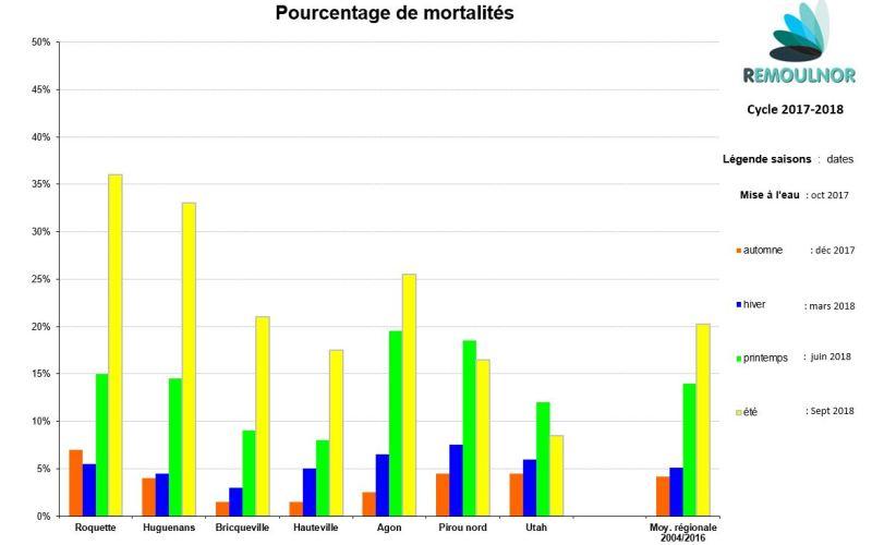 Mortalité moules