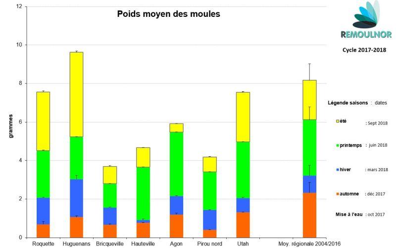 Poids Moules