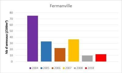 Nombre d'ormeaux sur 200m² observé sur le site de Fermanville (Manche)