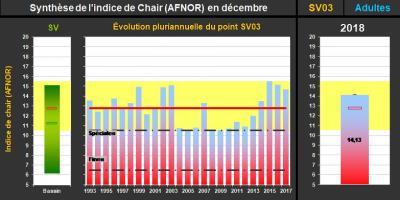 Synthèse de l'indice AFNOR à St Vaast La Hougue(@SMEL)